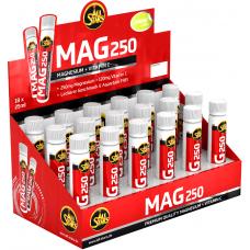 Vedel magneesium krampide vältimiseks - All Stars Mag 250